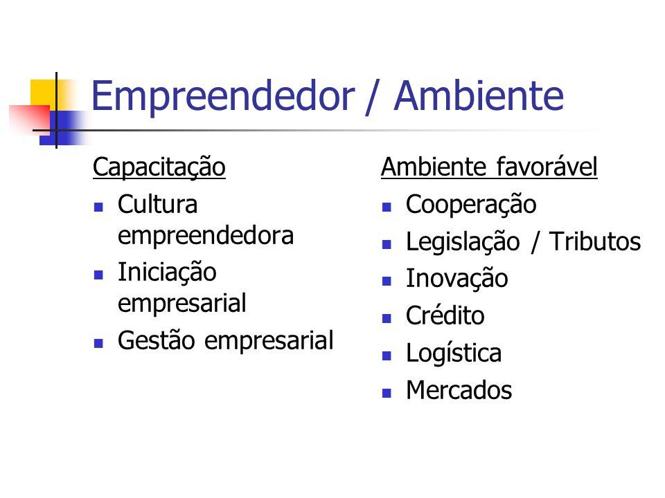 Empreendedor / Ambiente