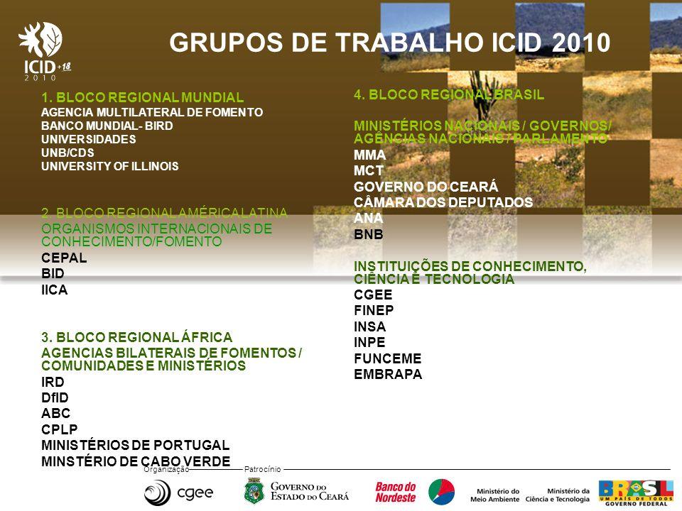 GRUPOS DE TRABALHO ICID 2010