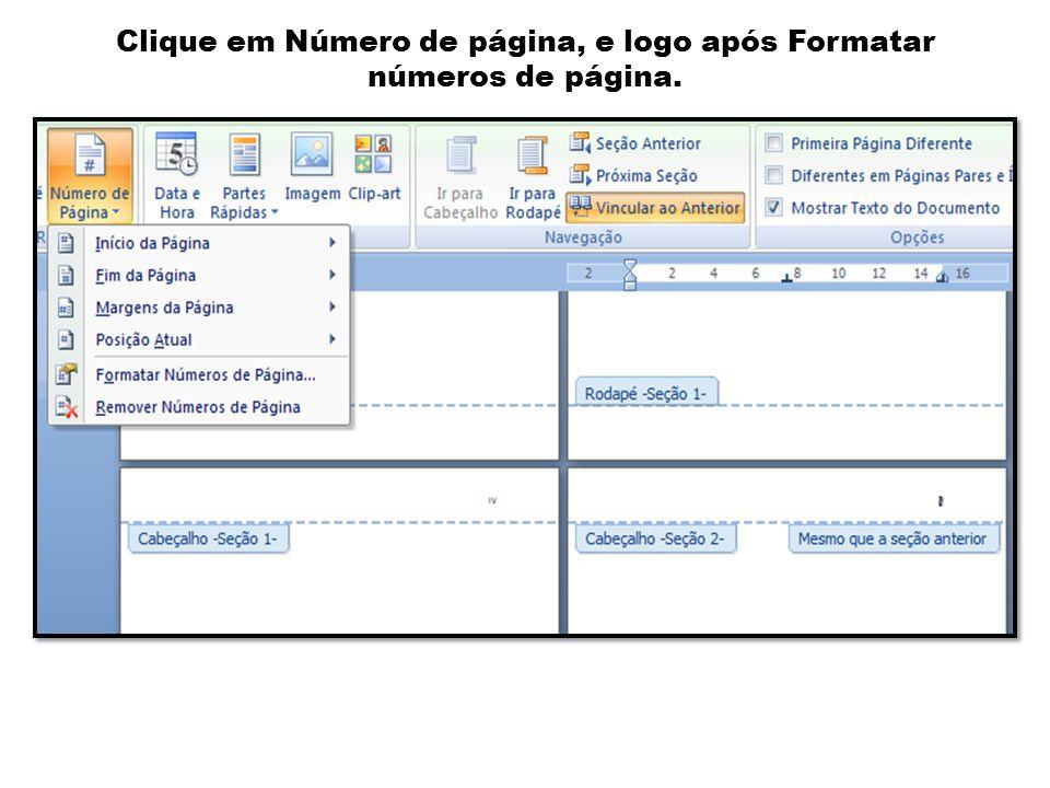 Clique em Número de página, e logo após Formatar números de página.