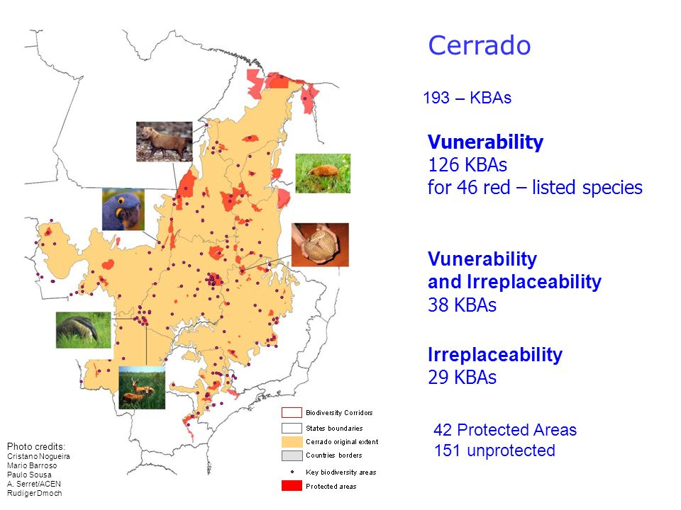 Cerrado Vunerability 126 KBAs for 46 red – listed species