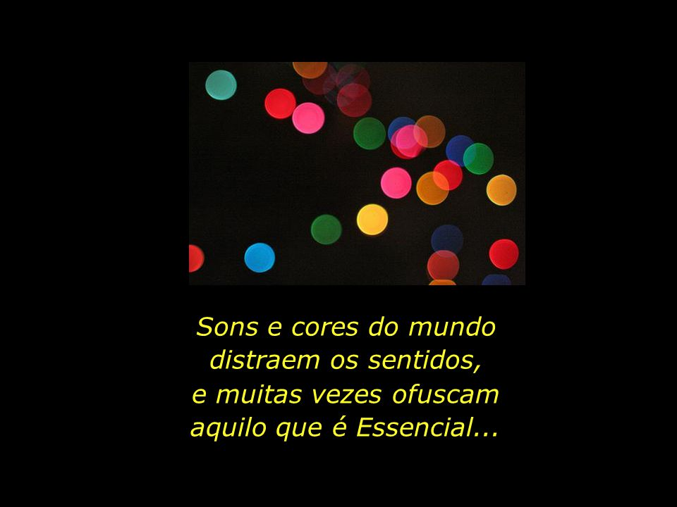 Sons e cores do mundo distraem os sentidos,