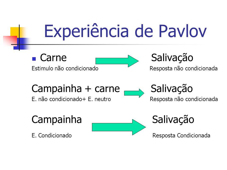 Experiência de Pavlov Carne Salivação Campainha + carne Salivação