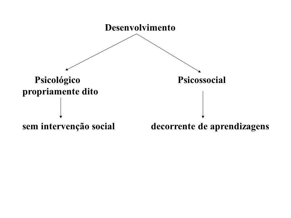 Desenvolvimento Psicológico Psicossocial propriamente dito.