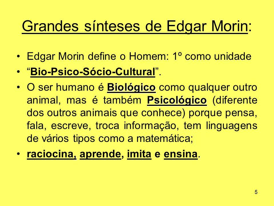 Grandes sínteses de Edgar Morin:
