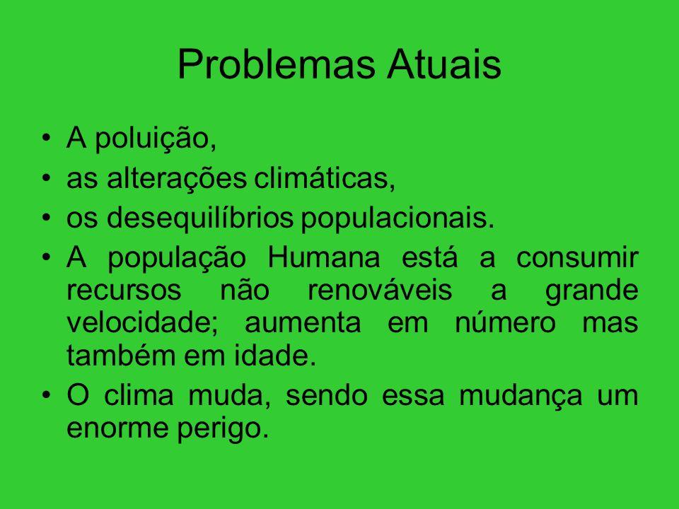 Problemas Atuais A poluição, as alterações climáticas,