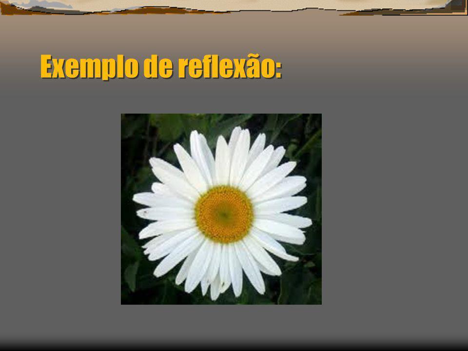 Exemplo de reflexão: