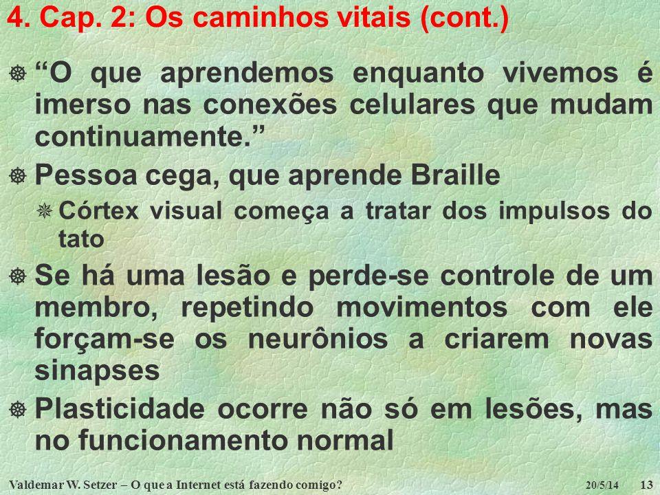 4. Cap. 2: Os caminhos vitais (cont.)