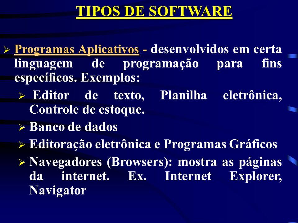 TIPOS DE SOFTWARE Programas Aplicativos - desenvolvidos em certa linguagem de programação para fins específicos. Exemplos: