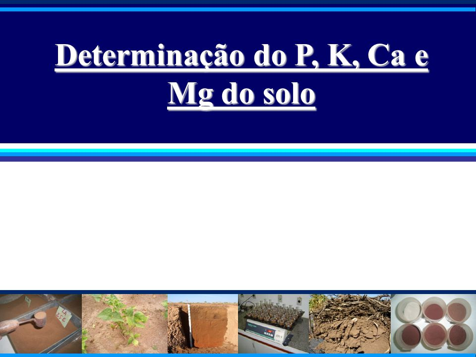Determinação do P, K, Ca e Mg do solo