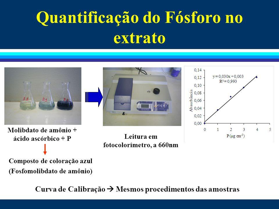 Quantificação do Fósforo no extrato