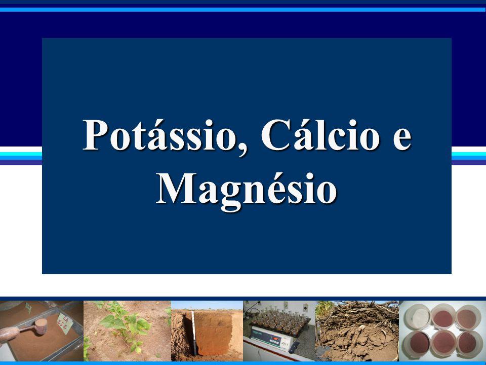 Potássio, Cálcio e Magnésio