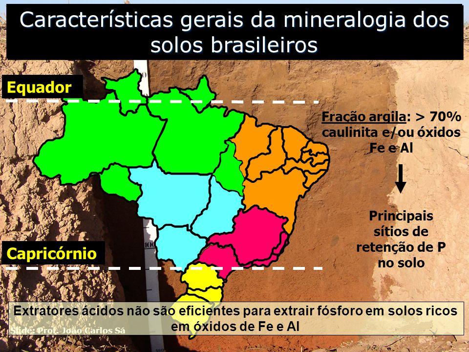 Características gerais da mineralogia dos solos brasileiros