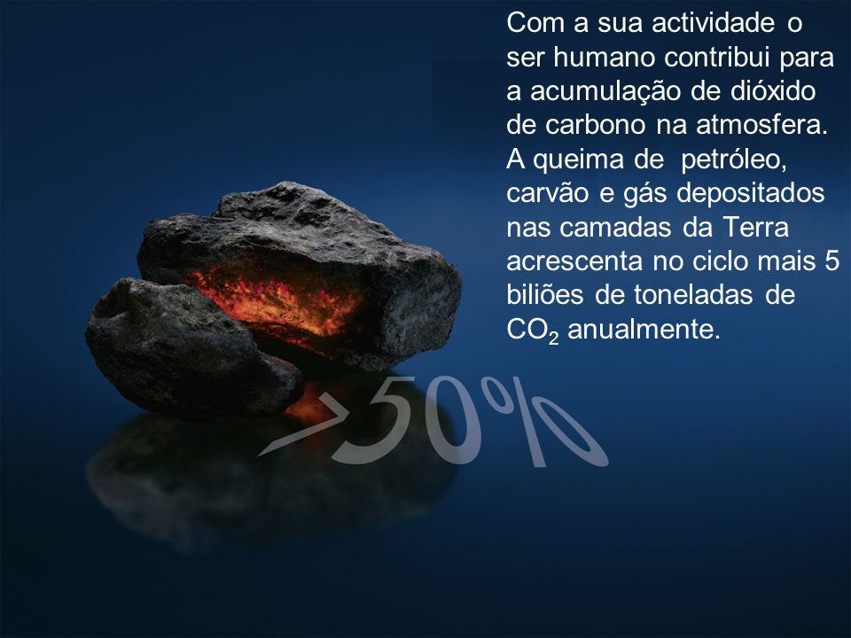 Com a sua actividade o ser humano contribui para a acumulação de dióxido de carbono na atmosfera.