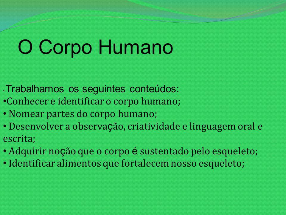 O Corpo Humano Conhecer e identificar o corpo humano;