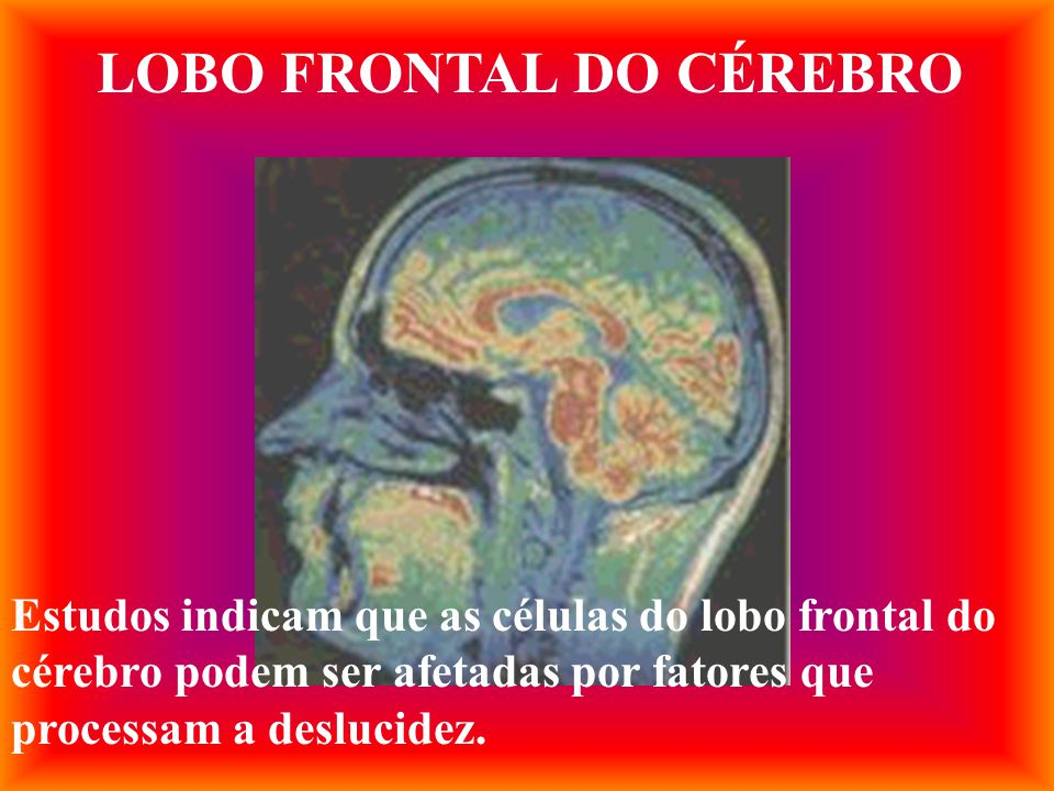 LOBO FRONTAL DO CÉREBRO