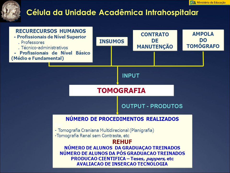 Célula da Unidade Acadêmica Intrahospitalar