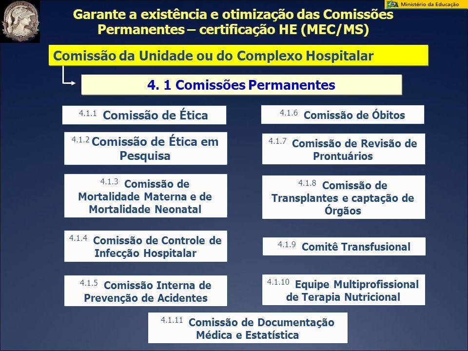 4. 1 Comissões Permanentes