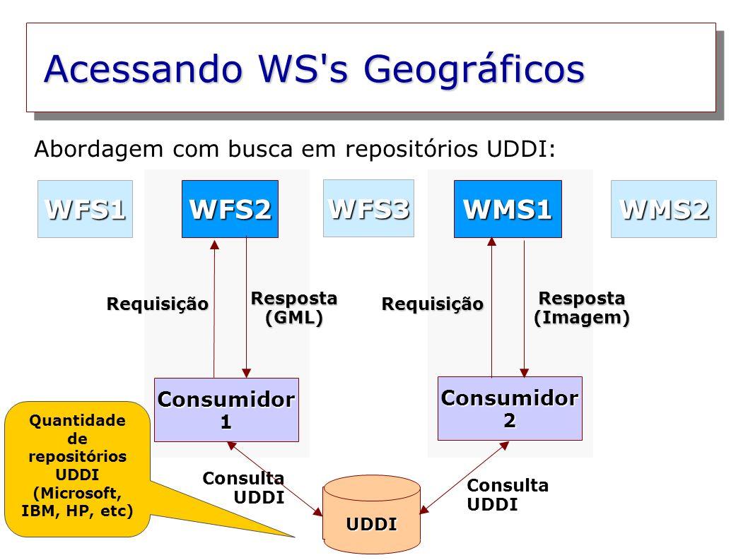 Acessando WS s Geográficos