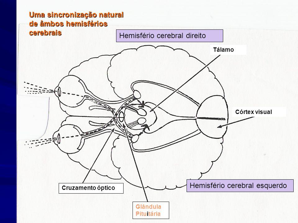 Uma sincronização natural de âmbos hemisférios cerebrais