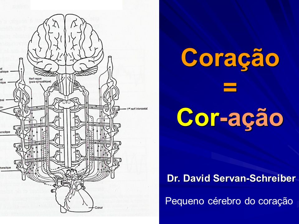 Coração = Cor-ação Pequeno cérebro do coração