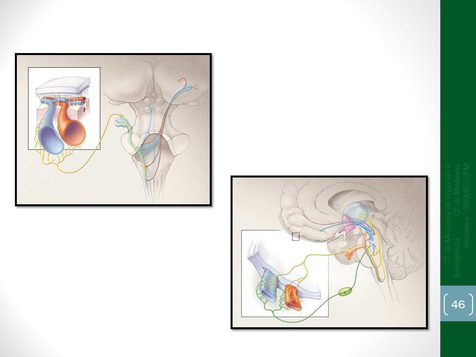 CT de Medicina de Urgência e Emergência CT de Medicina Intensiva - CREMEC/CFM