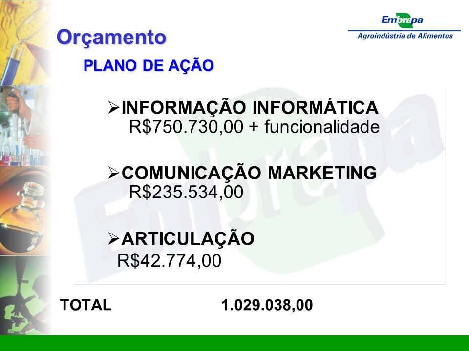 Orçamento INFORMAÇÃO INFORMÁTICA R$750.730,00 + funcionalidade