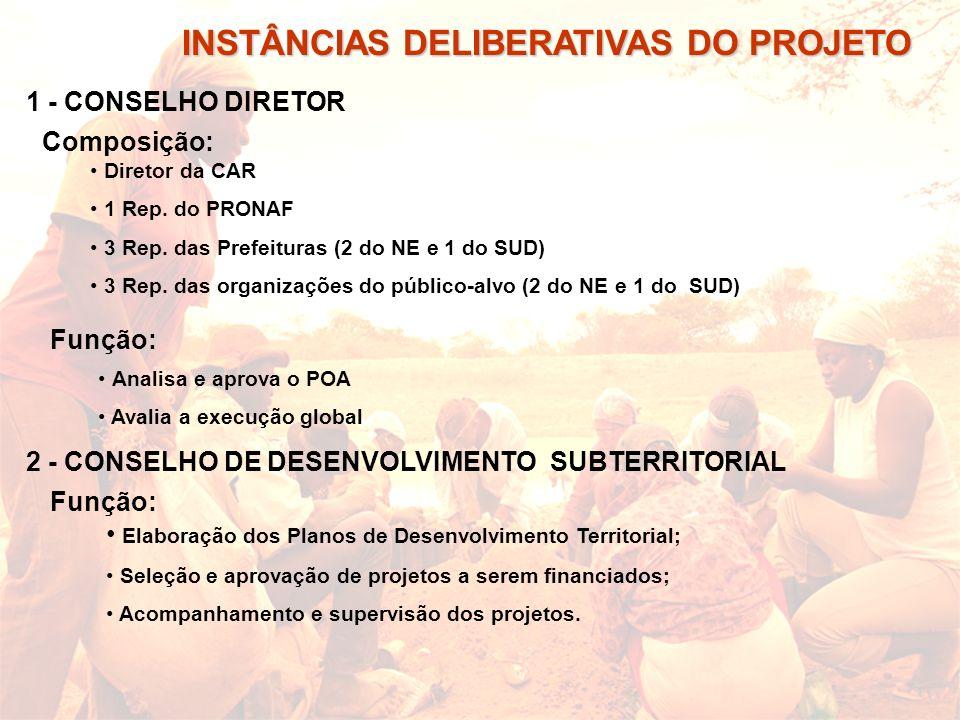 INSTÂNCIAS DELIBERATIVAS DO PROJETO