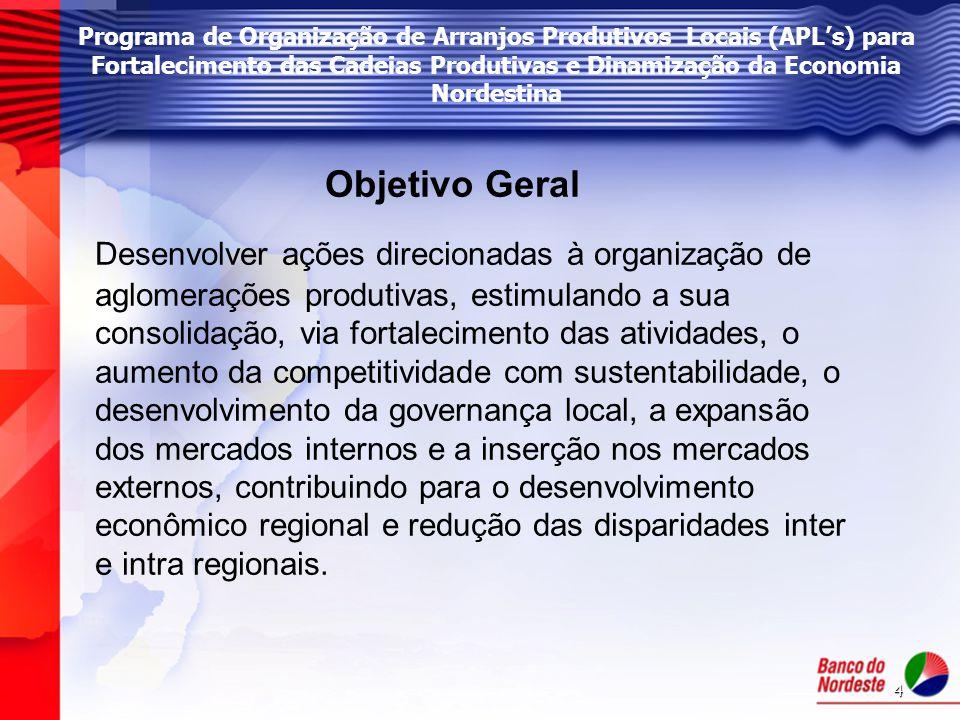 Programa de Organização de Arranjos Produtivos Locais (APL's) para Fortalecimento das Cadeias Produtivas e Dinamização da Economia Nordestina