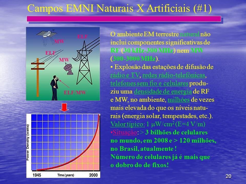 Campos EMNI Naturais X Artificiais (#1)