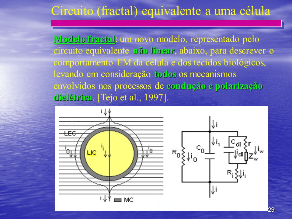 Circuito (fractal) equivalente a uma célula