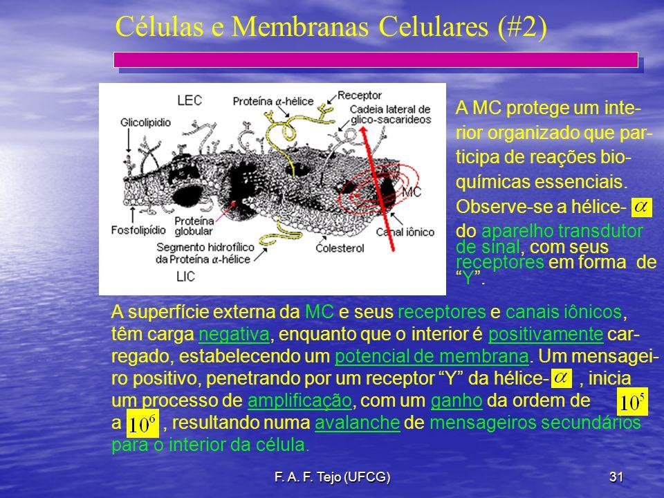 Células e Membranas Celulares (#2)