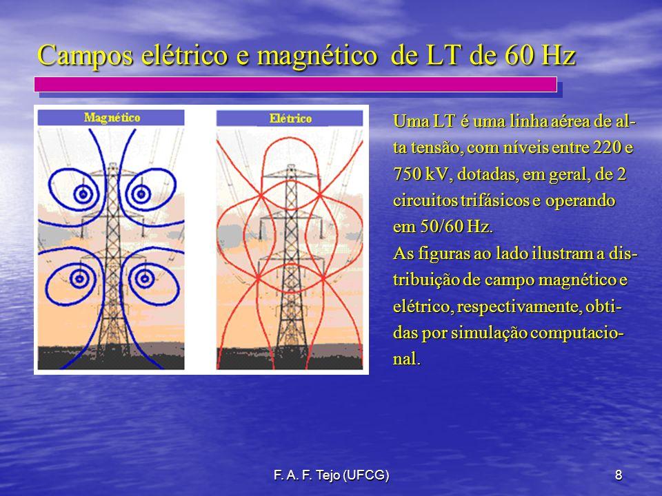 Campos elétrico e magnético de LT de 60 Hz