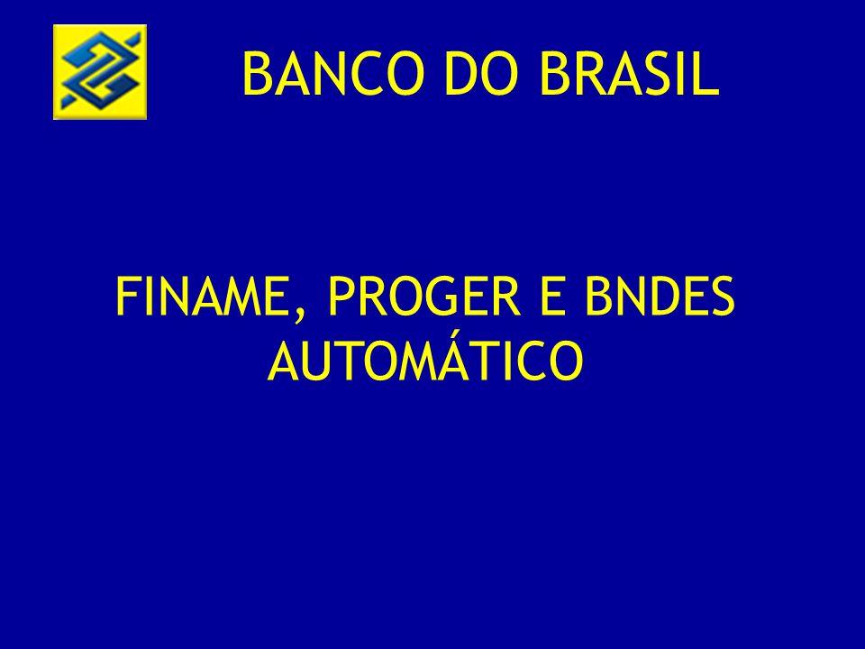 FINAME, PROGER E BNDES AUTOMÁTICO