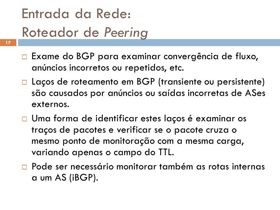 Entrada da Rede: Roteador de Peering