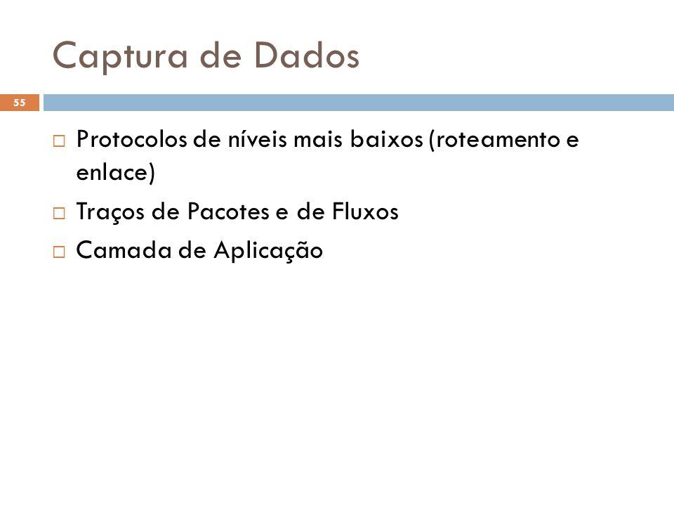 Captura de Dados Protocolos de níveis mais baixos (roteamento e enlace) Traços de Pacotes e de Fluxos.
