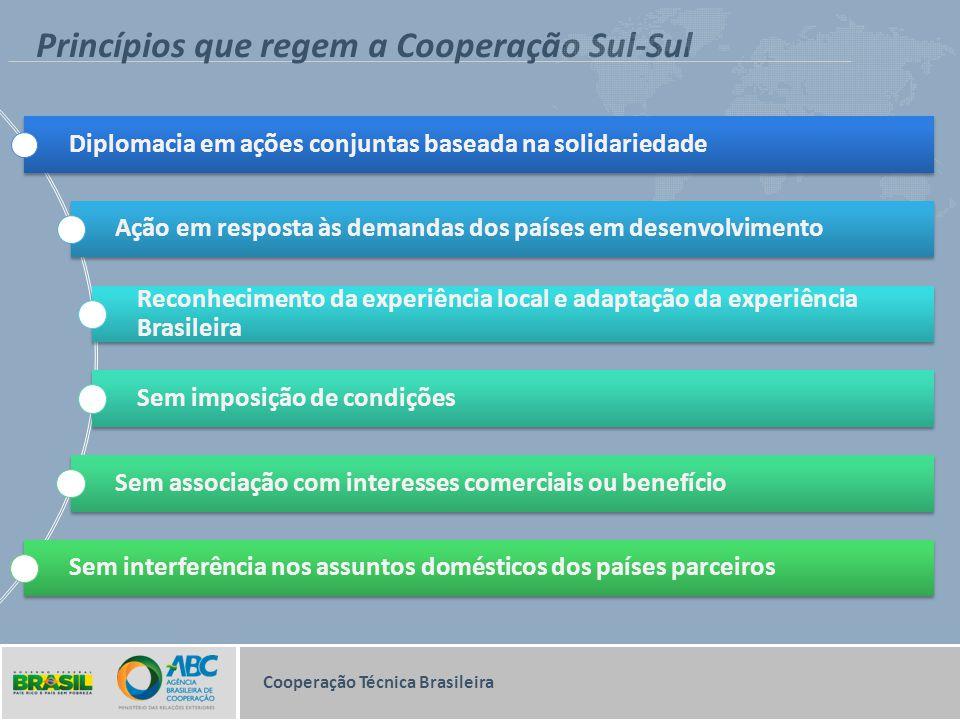 Princípios que regem a Cooperação Sul-Sul