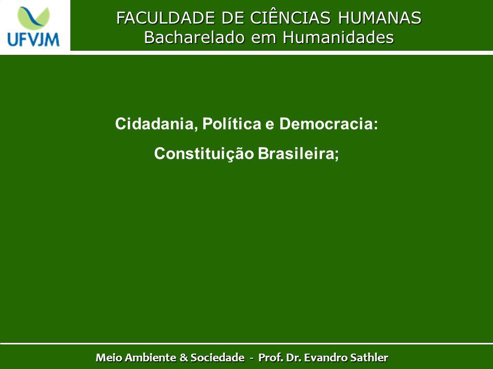 Cidadania, Política e Democracia: Constituição Brasileira;