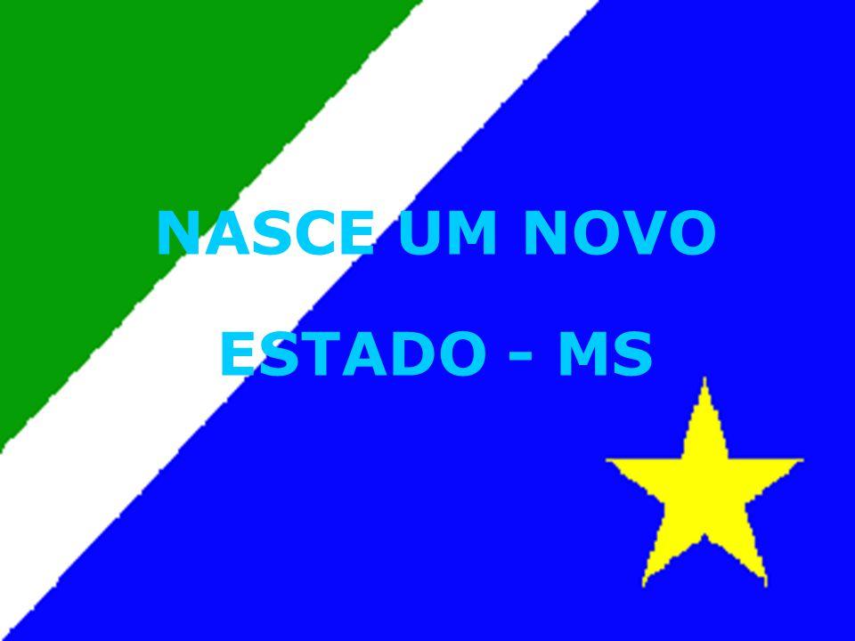 NASCE UM NOVO ESTADO - MS