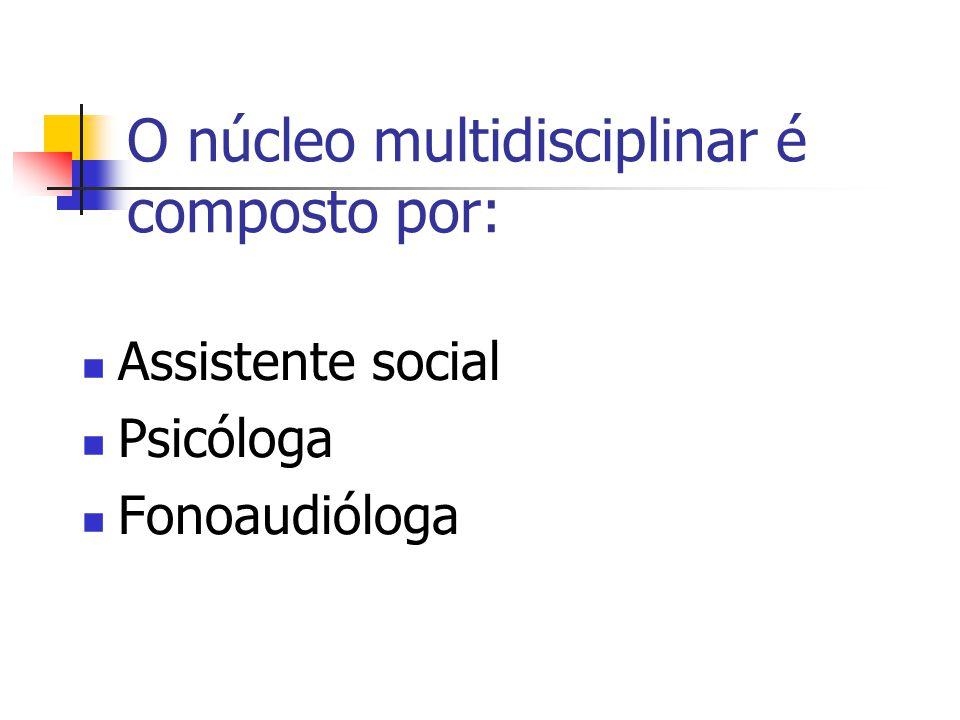 O núcleo multidisciplinar é composto por: