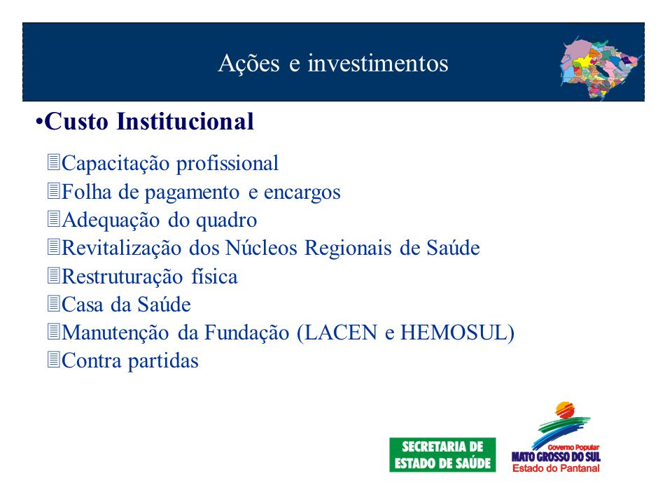 Ações e investimentos Custo Institucional Capacitação profissional