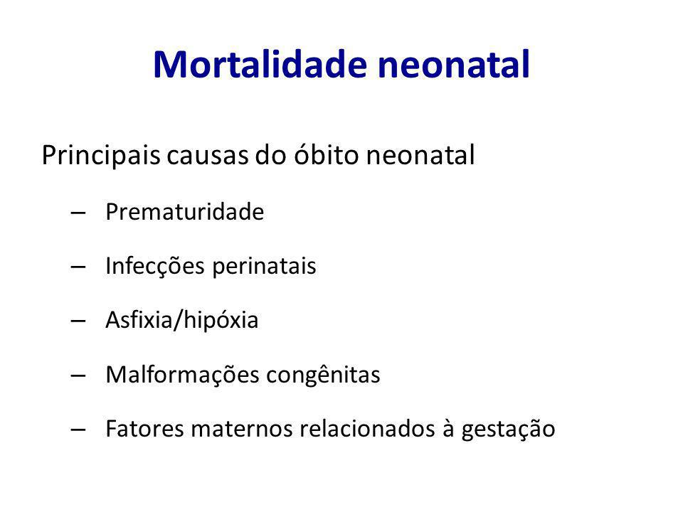 Mortalidade neonatal Principais causas do óbito neonatal Prematuridade