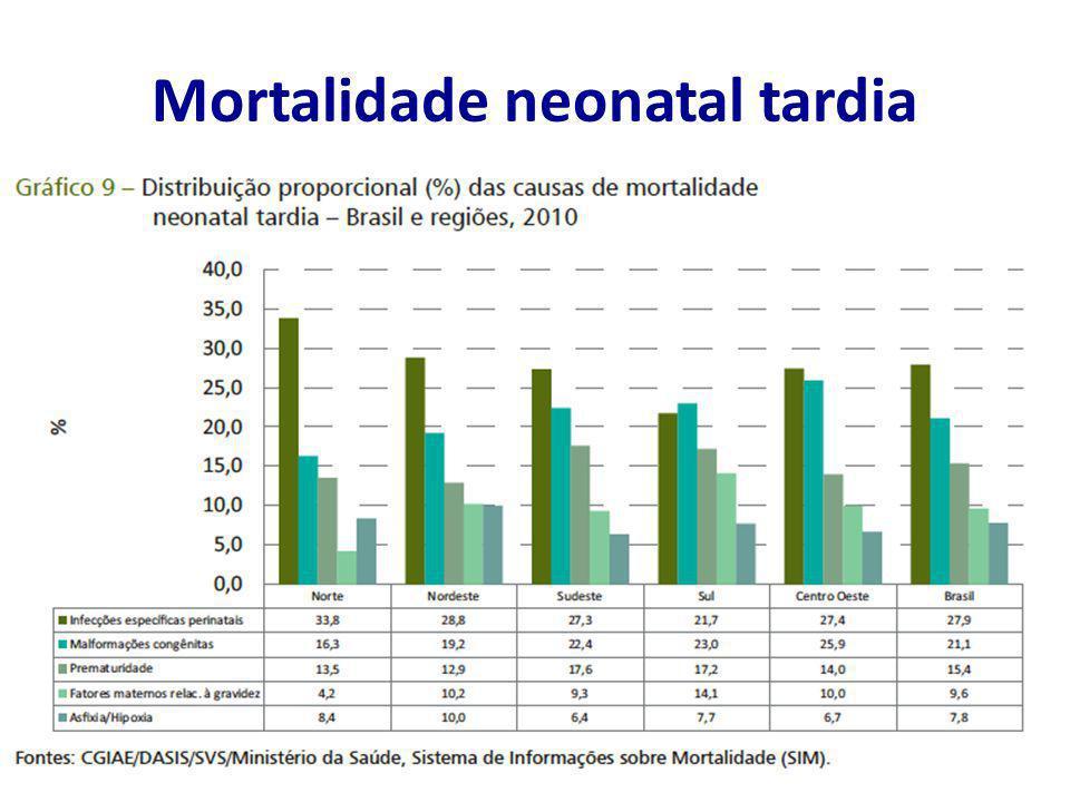 Mortalidade neonatal tardia