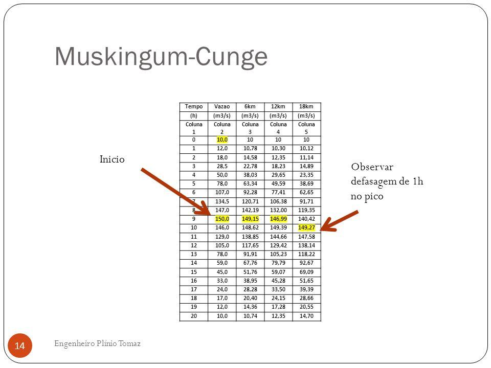 Muskingum-Cunge Inicio Observar defasagem de 1h no pico