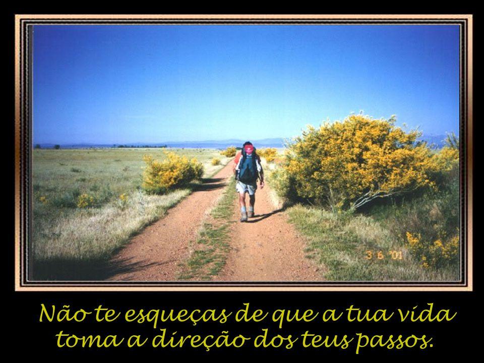 Não te esqueças de que a tua vida toma a direção dos teus passos.