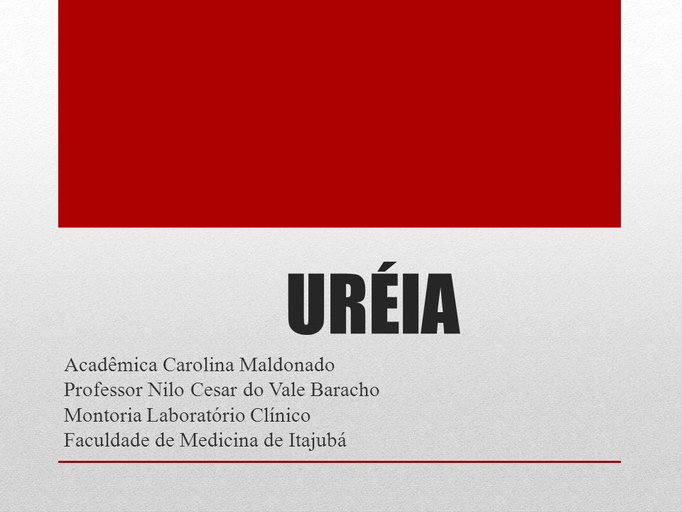 URÉIA Acadêmica Carolina Maldonado