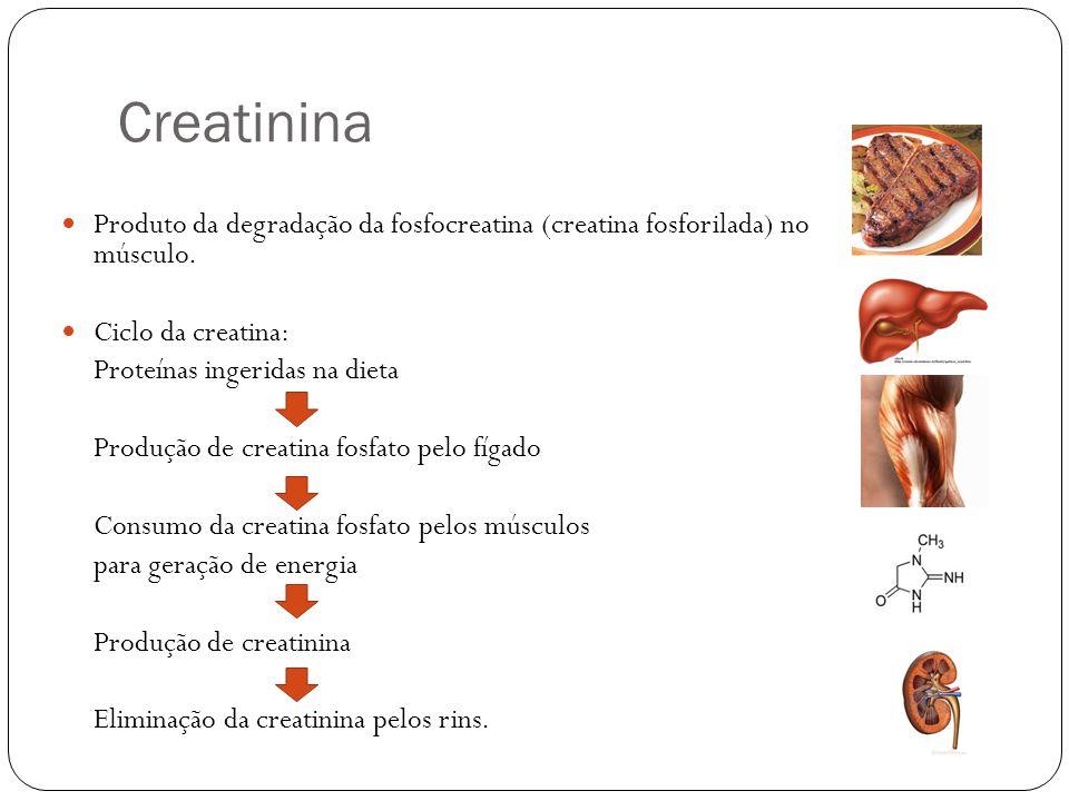 Creatinina Produto da degradação da fosfocreatina (creatina fosforilada) no músculo.