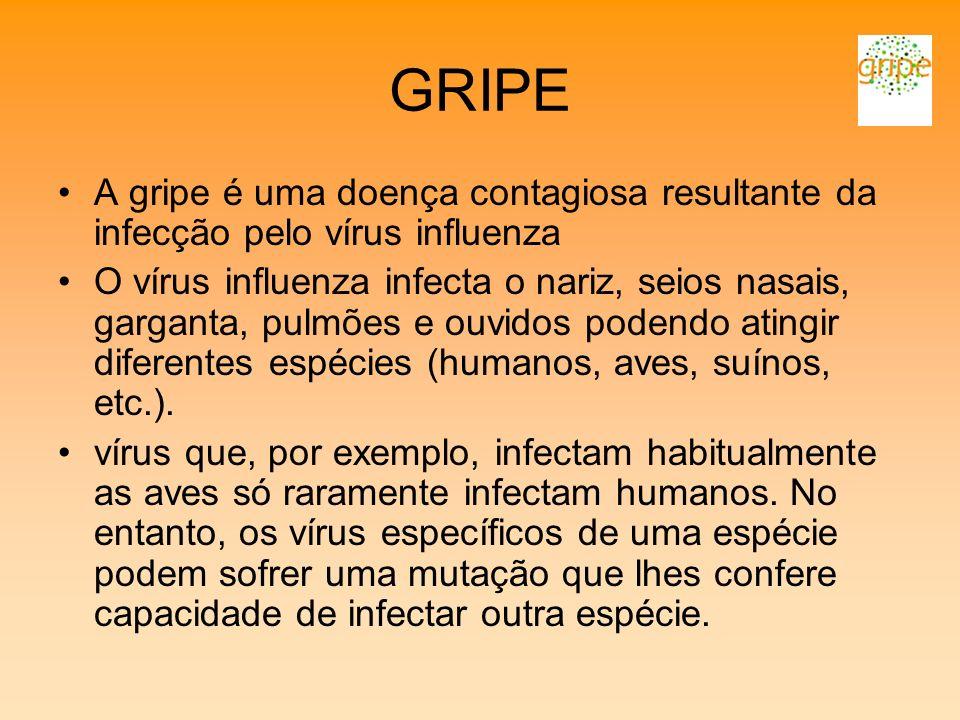 GRIPE A gripe é uma doença contagiosa resultante da infecção pelo vírus influenza.