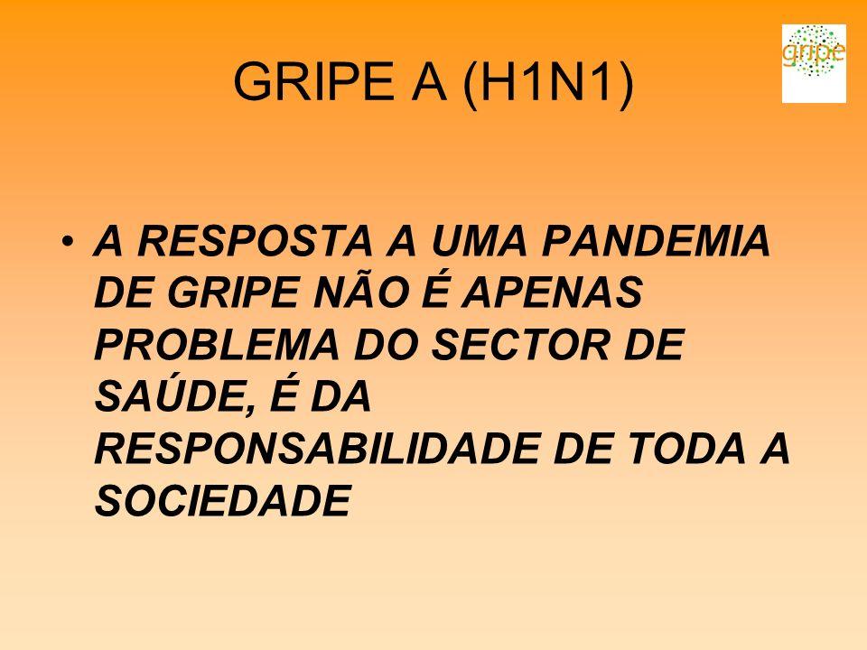 GRIPE A (H1N1) A RESPOSTA A UMA PANDEMIA DE GRIPE NÃO É APENAS PROBLEMA DO SECTOR DE SAÚDE, É DA RESPONSABILIDADE DE TODA A SOCIEDADE.