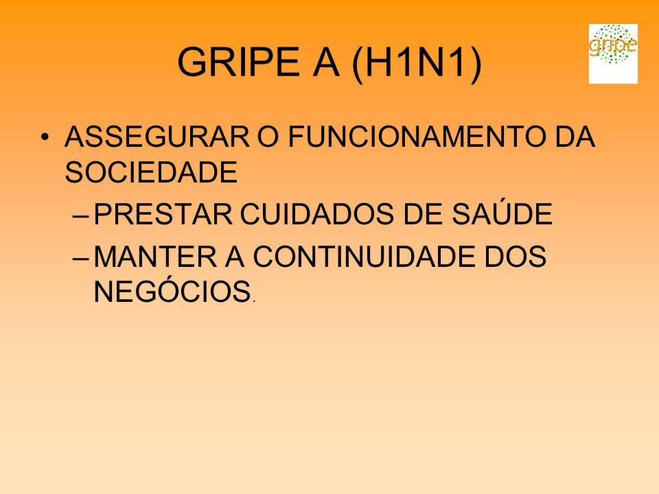 GRIPE A (H1N1) ASSEGURAR O FUNCIONAMENTO DA SOCIEDADE