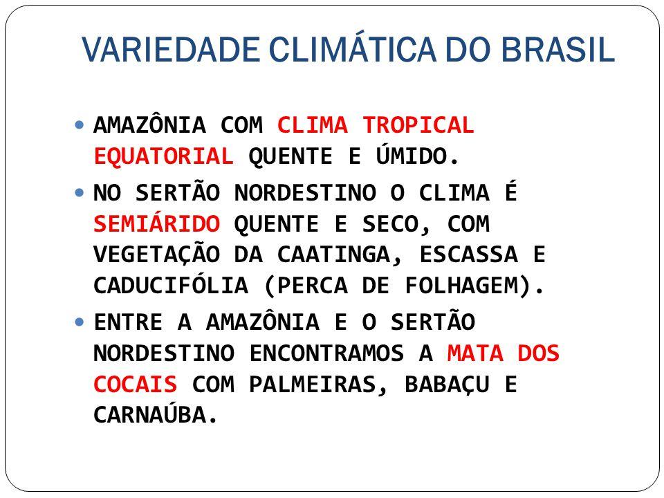 VARIEDADE CLIMÁTICA DO BRASIL